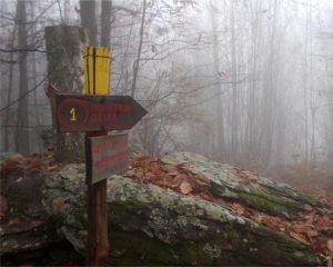mountain-4-1024x818